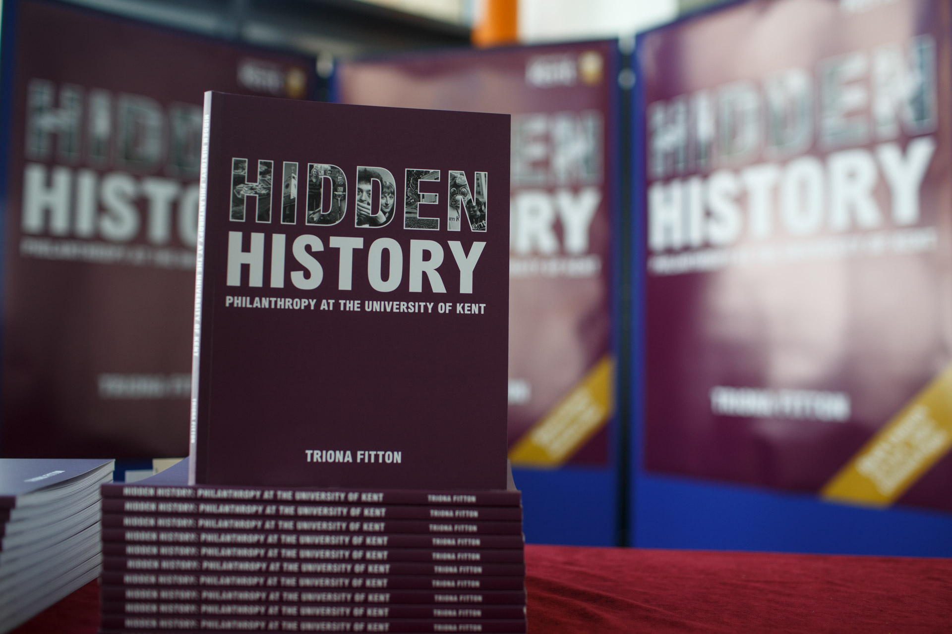 Hidden History by Triona Fitton