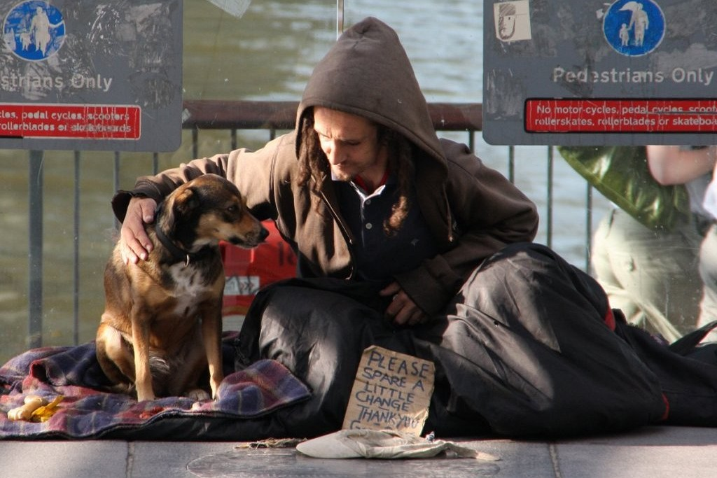 Homeless People And Their Animals University Of Kent