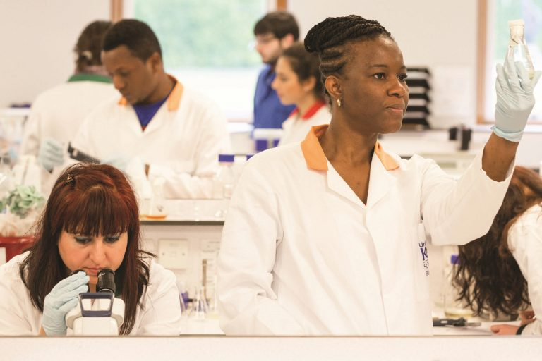 Comment: Opportunities for women in science