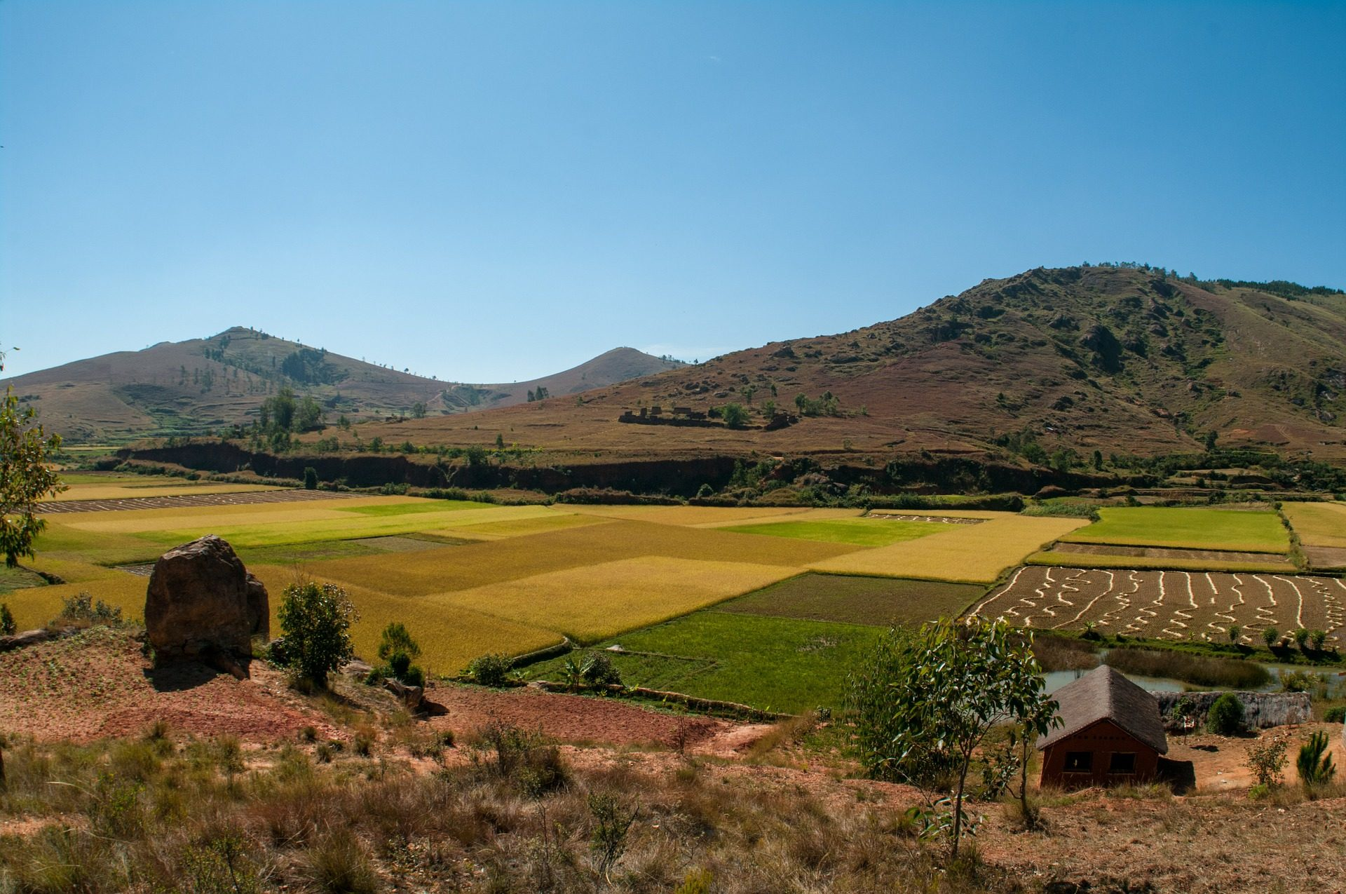 Madagascar countryside