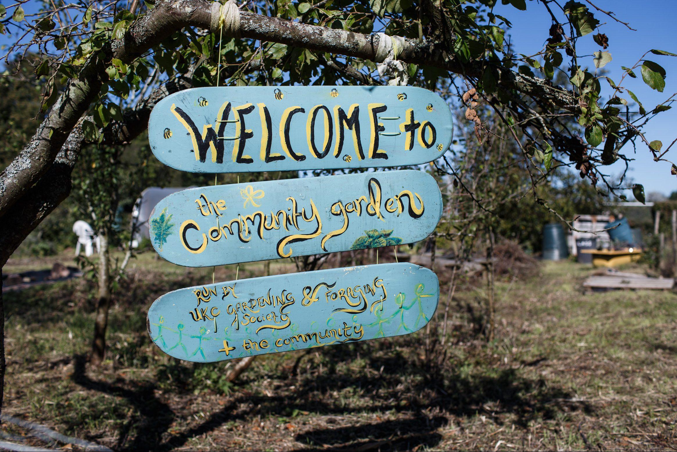 Kent Community Oasis Garden now open