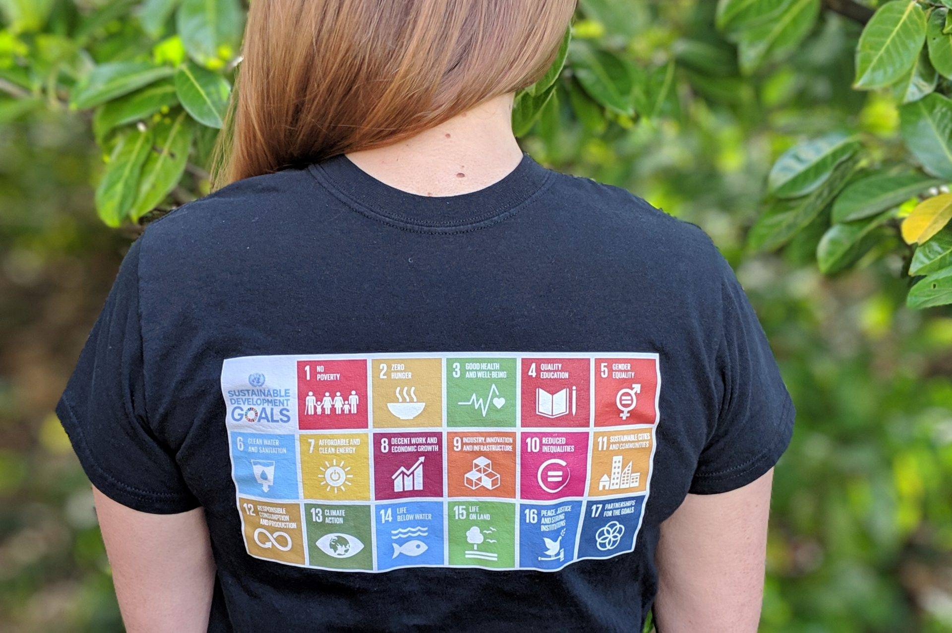 Back of t shirt with infographics showing sustainable goals