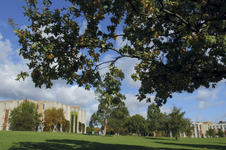 Kent to open its Canterbury campus to young people for free holiday activities