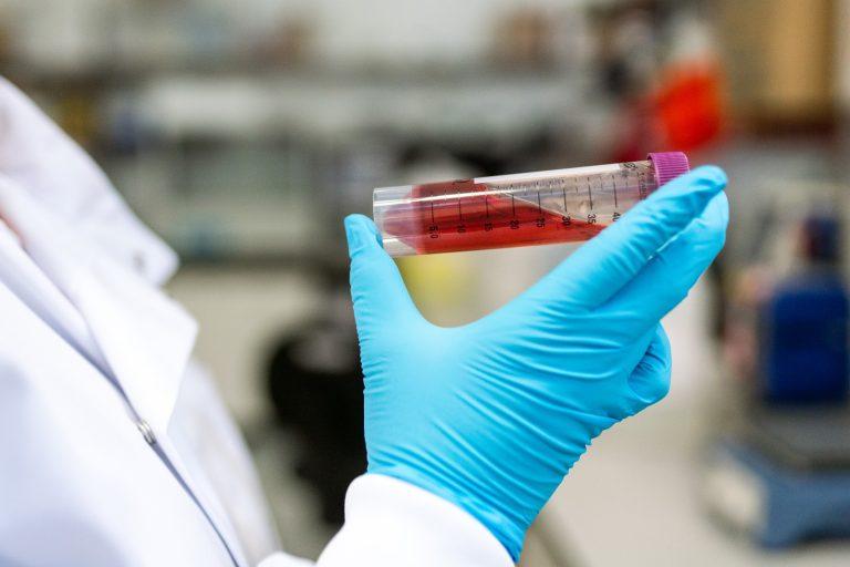 Explainer: What sets biomedical engineers apart