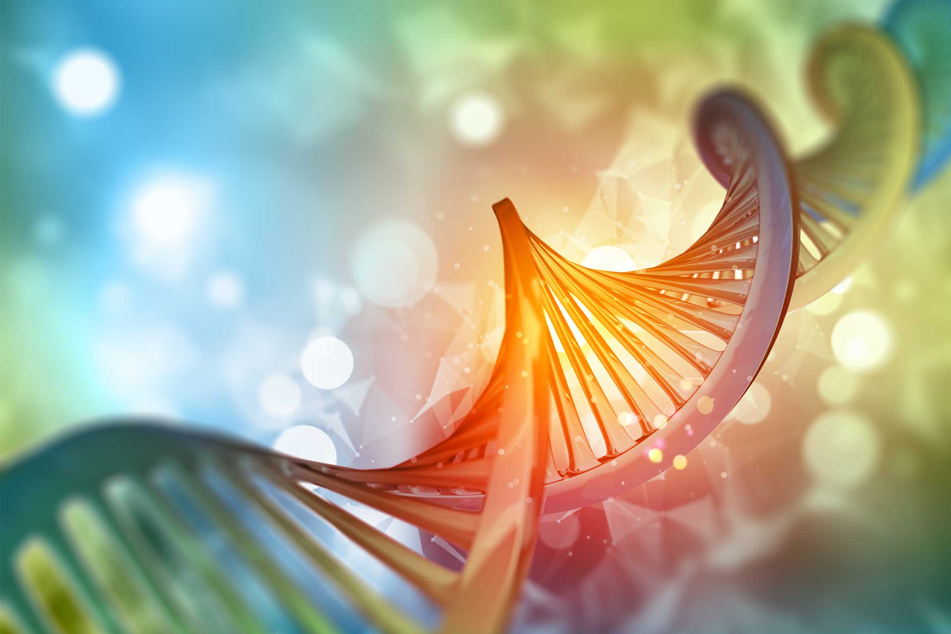 Image representing Genetics